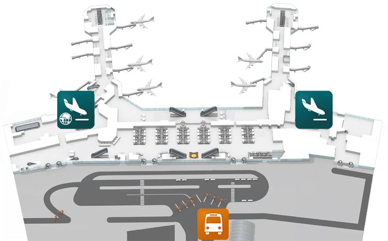 Автобусные остановки в аэропорту Домодедово